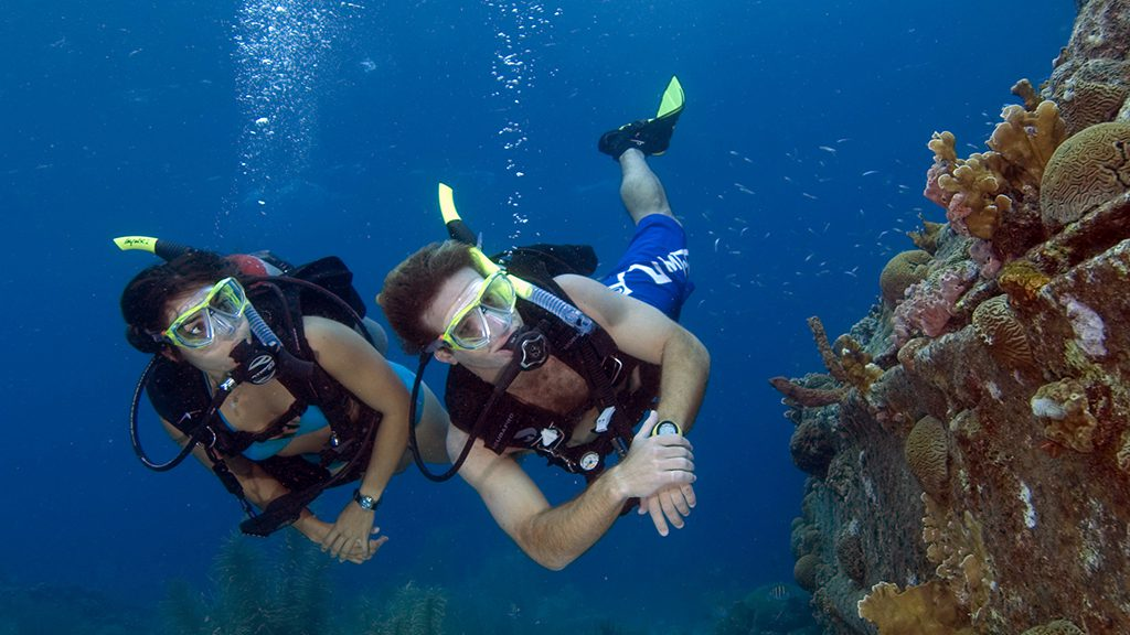 scuba diver dive courses dive tours snorkeling on koh samui with